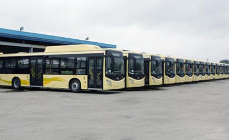 公交379路开通后,哈西站周边公交线路达到12条,分别为11路高清图片