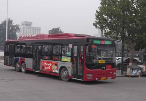石家庄8条公交线路恢复运行1