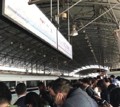 2017年4月14日上海地鐵9號線恢復了嗎