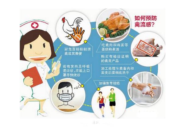 厦门重点预防人感染H7N91