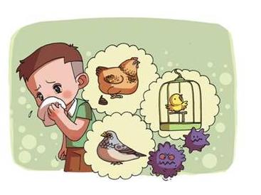 深圳一6岁女童染H7N91