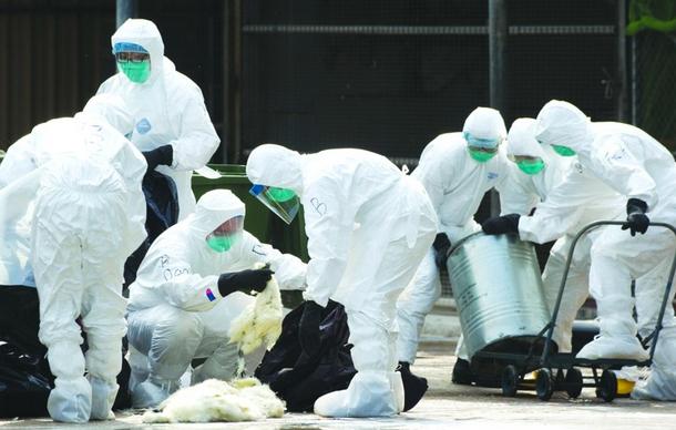 厦门发生5例人感染H7N9病例1