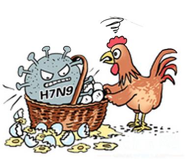 H7N9禽流感患者有什么症状1