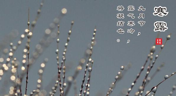 寒露是几月几日几点钟
