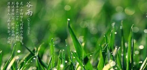 谷雨养生吃什么