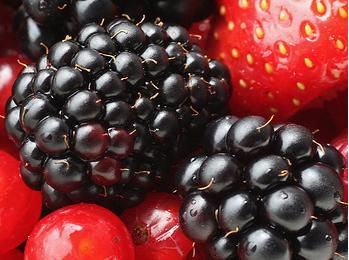 谷雨吃什么水果好
