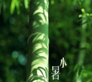 上海黄梅天是几月_伏旱时间和梅雨_伏旱 - 随意优惠券