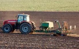 夏至农事活动有哪些