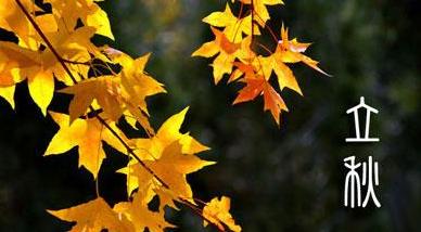 关于立秋节气的古诗