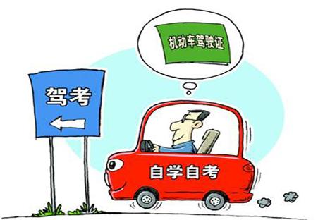 自考驾照流程
