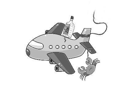 瓶装酒可以带上飞机吗-机票资讯-客运站
