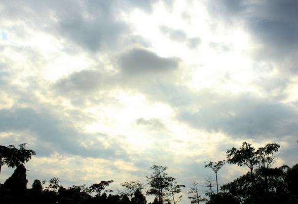 上海市最近天气_天气预报 武汉_天气预报 上海_天气预报 北京_淘宝助理
