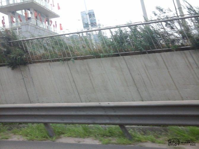 小欣游记--天津出发青岛沈阳威海乳山南戴河兴攻略无言第三关图片