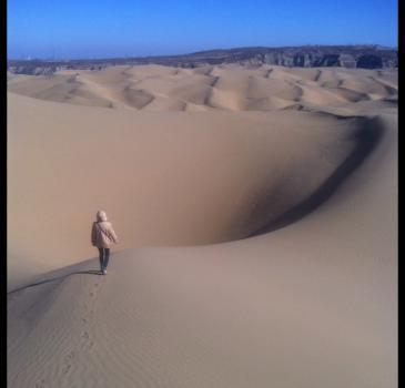鄂尔多斯响沙湾一日游