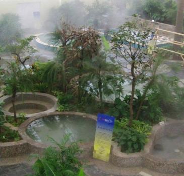 青岛出发到烟墩角天鹅湖+养生福地小汤热带雨林温泉(二次入浴)二日游