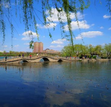 济南泉水一日游趵突泉、大明湖、芙蓉街一日游